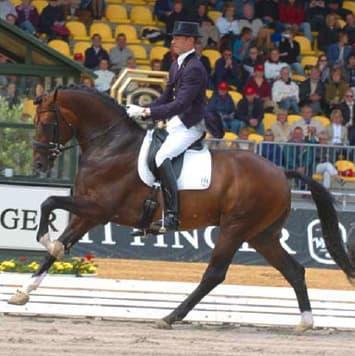 stallions florencio