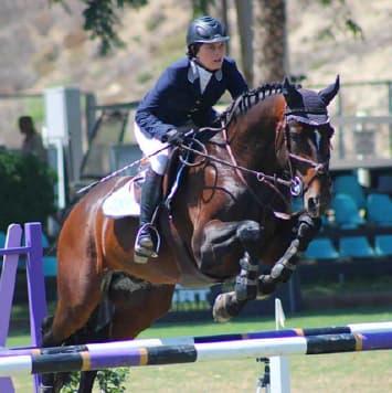 stallions picardo